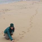 Dr. Tara Harris currently serves as the Minnesota Zoo's Vice President for Conservation; here she inspects tiger tracks in the Russian Far East